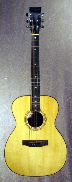 roberto venn student guitarCarroll2 Fall 2014