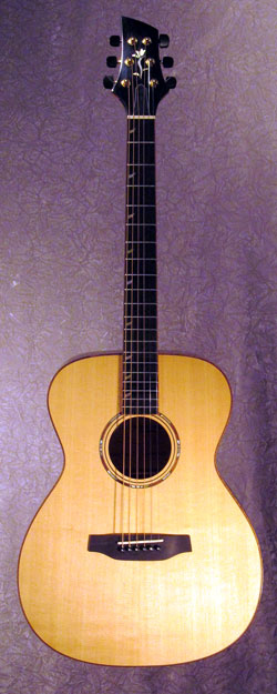roberto venn student guitarNichols2 Fall 2014