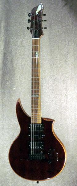 roberto venn student guitarNorton1 Fall 2016