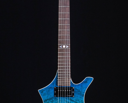 Roberto Venn Spring 2021 Electrreic Guitar 1 495x400 Baldacci Guitars, Shop Life and Recent Visitors!