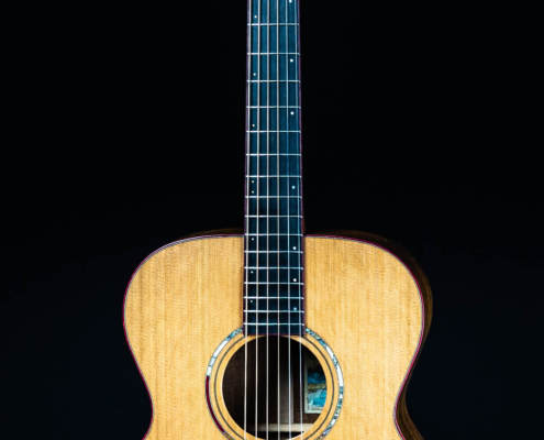Roberto Venn Spring 2021 Acoustic Ziko front 495x400 Our Spring 2021 Classes Move Forward...