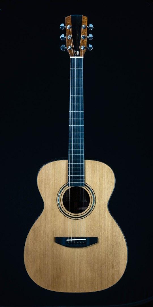 roberto venn student guitar Acoustic Joe front 14 Spring 2021