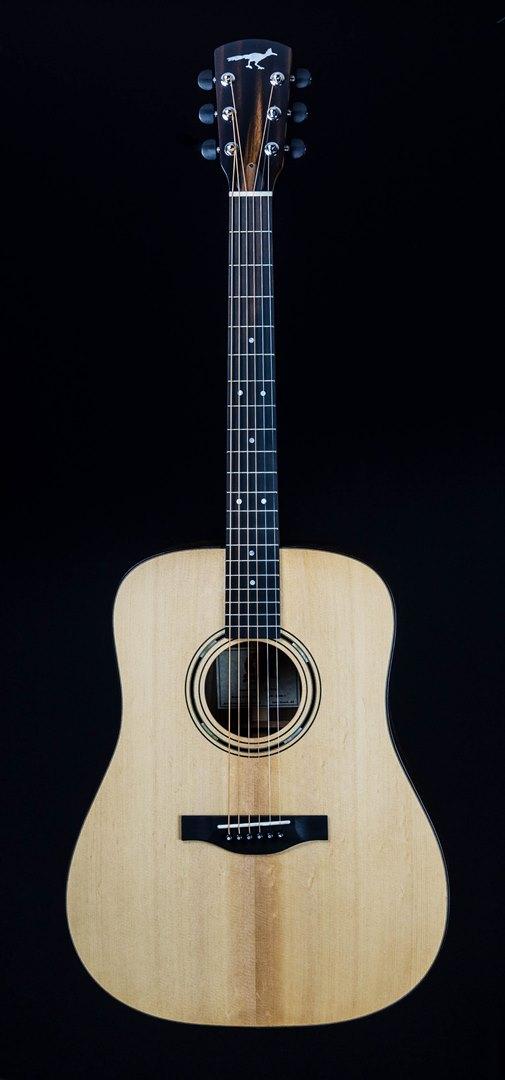 roberto venn student guitar Acoustic StuArt front30 Spring 2021