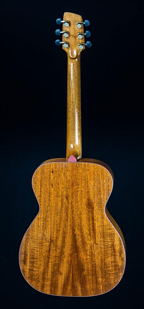 roberto venn student guitar Acoustic Ziko Back33 Spring 2021