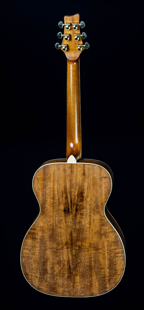 roberto venn student guitar Acoustic kevin back19 Spring 2021
