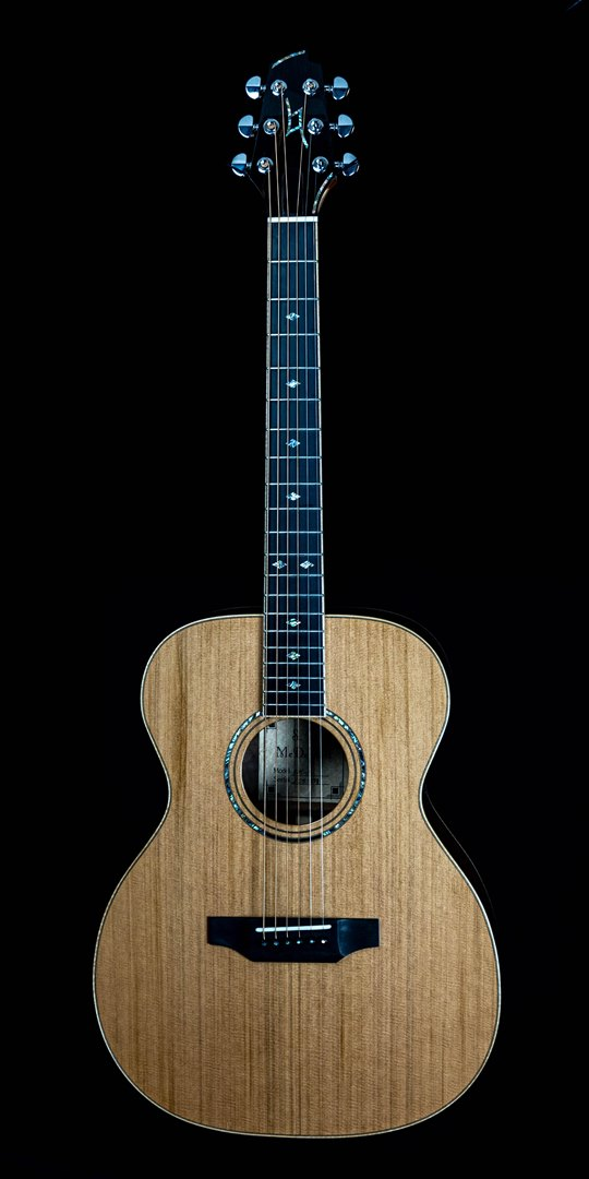 roberto venn student guitar Acoustic sean front28 Spring 2021