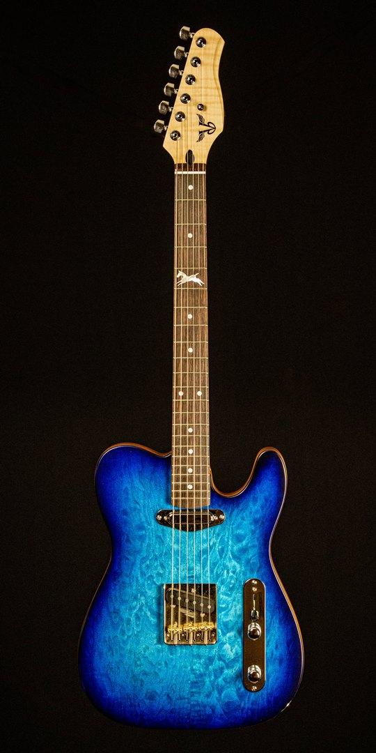 roberto venn student guitar Danalectric37 Spring 2021