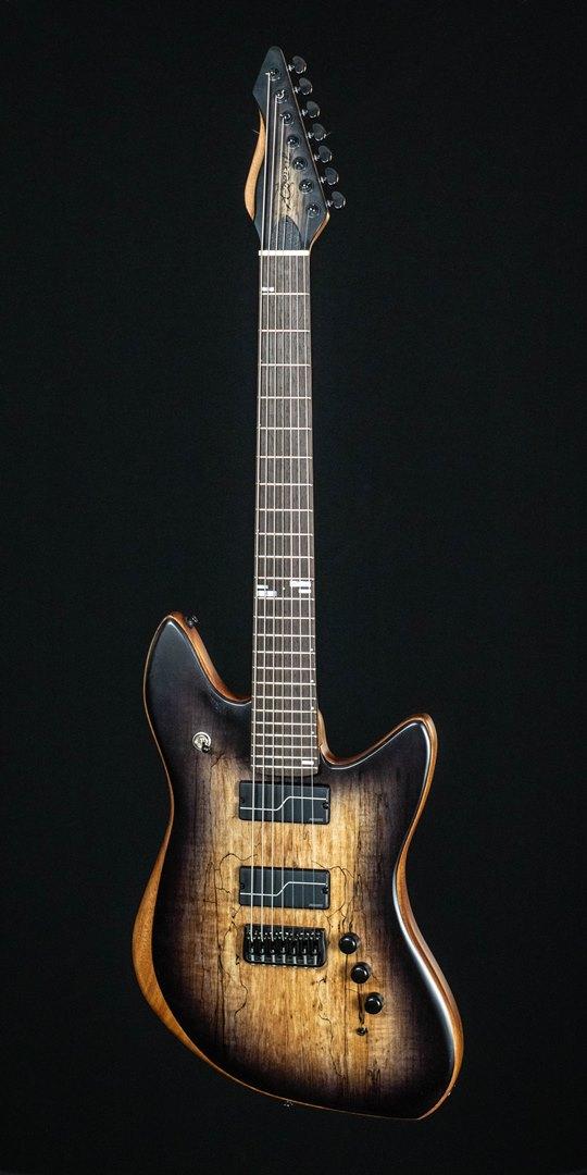 roberto venn student guitar Electric Michael46 1 Spring 2021